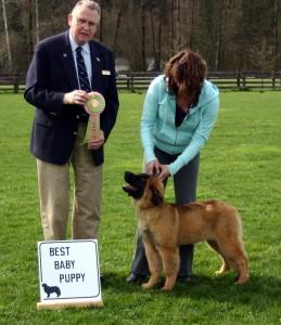 Best Baby Puppy, March 14, 2010