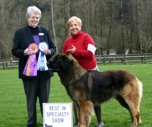 Best in Show, March 13, 2010