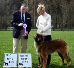 Reserve Winner's Bitch/Best Youth Bitch, March 14, 2010